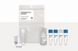 Gel / PCR / DNA Fragment Extraction Kit